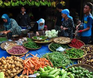 WHO framework targets improved food safety in South East Asia