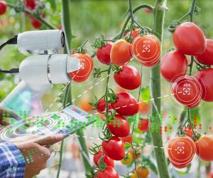 Agri-Tech Start-Ups are Shaping the Future of Farming