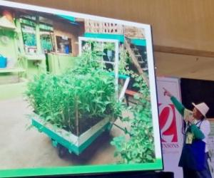 DA training arm pushes urban agri-business in Central Visayas